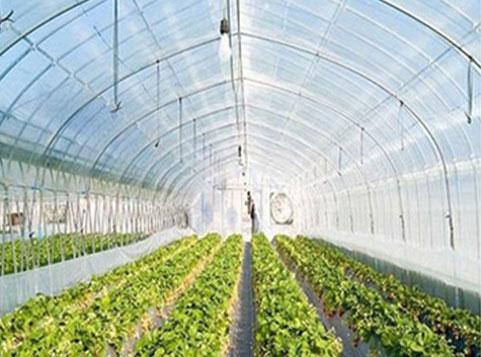 Aplicación Horticlutre Agriculture